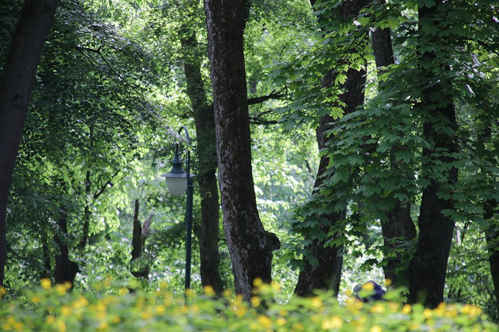 Камене-Подольский парк